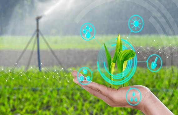 Agri-tech WayCool plans $20 mn capex, strategic investments