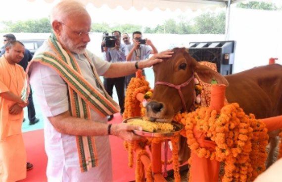 Propel livestock production to increase India's GDP, says PM Modi