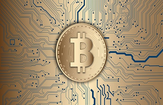 Should Governments Legalize Bitcoin?