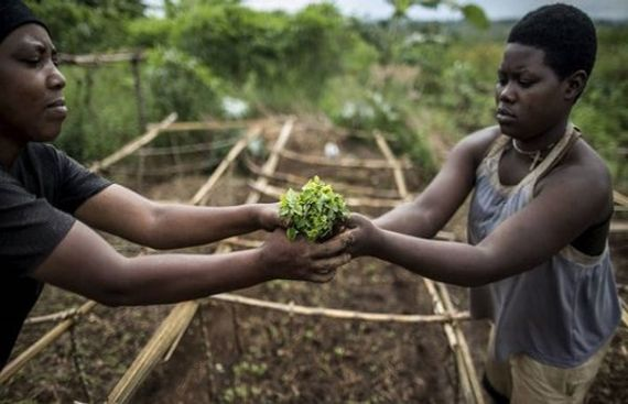 Italy and FAO for Joint Efforts to End Hunger