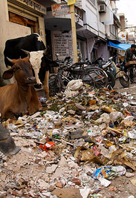 India's top dirtiest cities