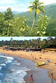The new 'spicy' face of Goa's monsoon tourism