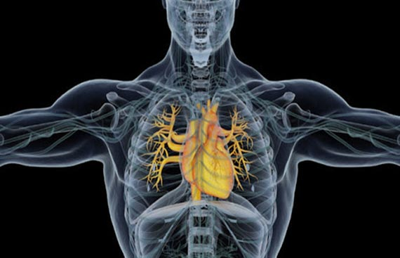 Abbott's Once-A-Day Ivabradine Receives DCGI Approval for Heart Failure and Angina patients