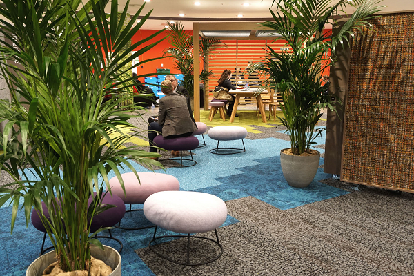 Biophilic Design in Offices Improve Employee Productivity and Well-Being