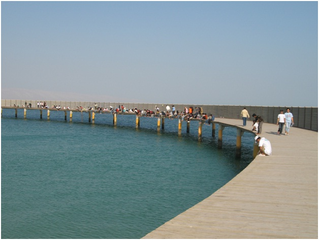 Why Fishing In Dubai Is Considered To Be A Great Idea?