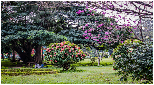 Welcome Spring by Visiting 5 Fascinating Places in Bangalore
