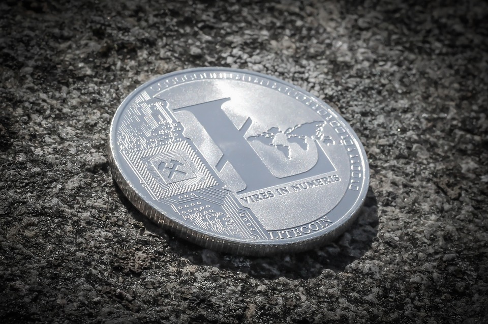 Litecoin Trading in 2019-2020: What to Consider