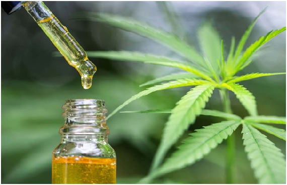 How to Choose The Right CBD Oil Products