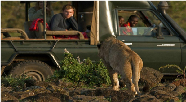 Africa Safari Destinations - Game Drives