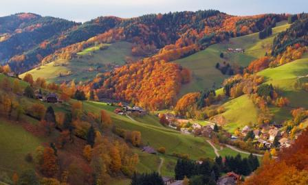 Most Visited Places In Germany blackforest