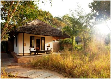 Tent Cottage In India