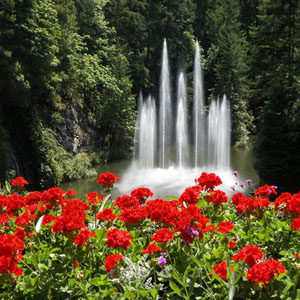 Spectacular Gardens Of The World Page 3