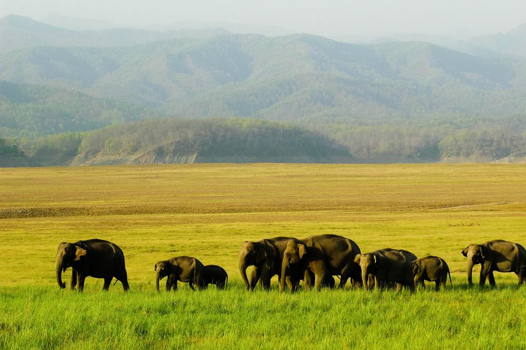 Top 6 Uttarakhand Travel Destinations