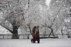 60 Kashmiris shifted to safer locations after snowfall