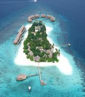 Local island