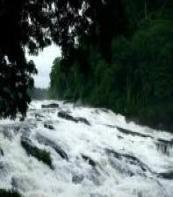 Vazhachal Fall Thrissur
