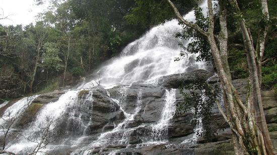 Kiliyur Falls Yercaud Tamilnadu
