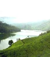 Munnar Thekkadi and Alleppey...