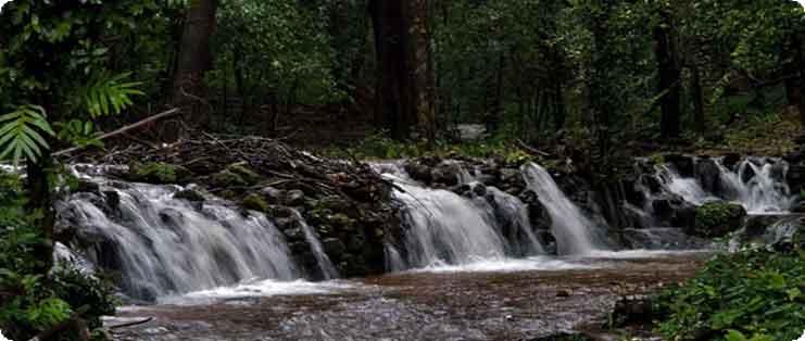 Agumbe Western Ghats, Karnataka