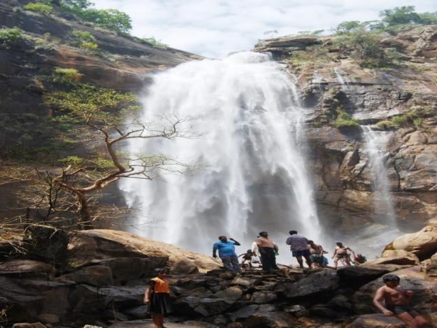 Kolli Hills Tamil Nadu India